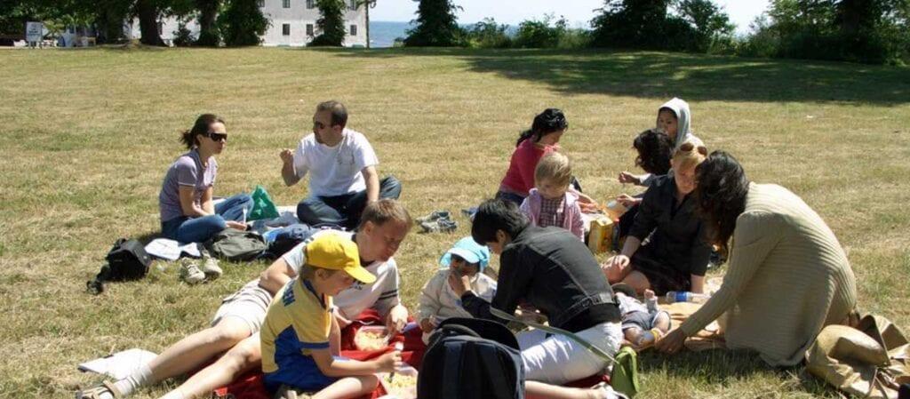 människor som sitter och har picknick på gräset