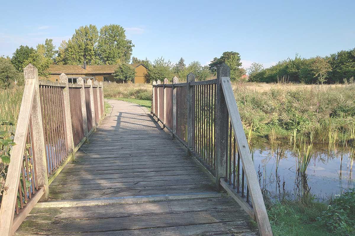 bro och vattendrag i en park